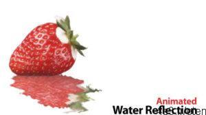 2 38 300x167 - دانلود Animated Water Reflection v2.6 - نرم افزار انعکاس عکس در امواج