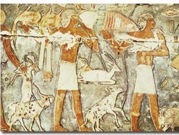 26 350x264 - بابیلوس؛ قدیمیترین نقطه باستانی جهان