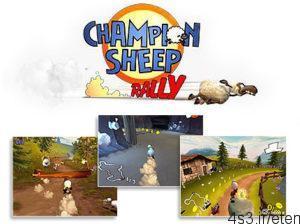 5 43 300x224 - دانلود Championsheep Rally - بازی رالی گوسفندی