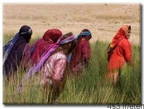 فرهنگ و آداب و رسوم ایل قـشقـایی