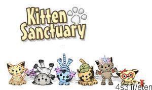 3 300x178 - دانلود Kitten Sanctuary v1.05.0 - بازی مخفیگاه بچه گربه