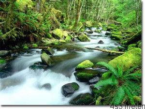 bbb 300x225 - هفت چشمه یاسوج مکانی زیبا برای تفریح