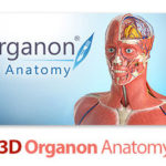 3D Organon Anatomy نرم افزار نمایش سه بعدی آناتومی بدن 1 150x150 - دانلود نرم افزار نمایش سه بعدی آناتومی بدن ۳D Organon Anatomy