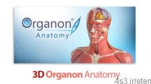 3D Organon Anatomy نرم افزار نمایش سه بعدی آناتومی بدن 1 300x167 - دانلود نرم افزار نمایش سه بعدی آناتومی بدن ۳D Organon Anatomy