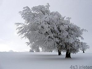 های زمستان - پیامک های زمستان بخش ۱