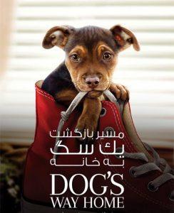 1 14 244x300 - دانلود فیلم A Dogs Way Home 2019 مسیر بازگشت یک سگ به خانه با دوبله فارسی و کیفیت عالی
