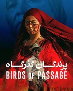7 14 242x300 - دانلود فیلم Birds of Passage 2018 پرندگان گذرگاه با زیرنویس فارسی و کیفیت عالی