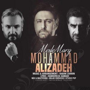 460 300x300 - دانلود آهنگ محمد علیزاده به نام مثل مرگ