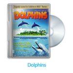 3 11 150x150 - دانلود Dolphins 2000 - مستند دلفین ها