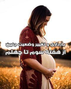 دانلود کتاب بارداری و تغییر وضعیت جنین سایت 4s3.ir