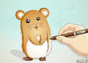 چگونه یک همستر نقاشی کنیم؟ سایت 4s3.ir