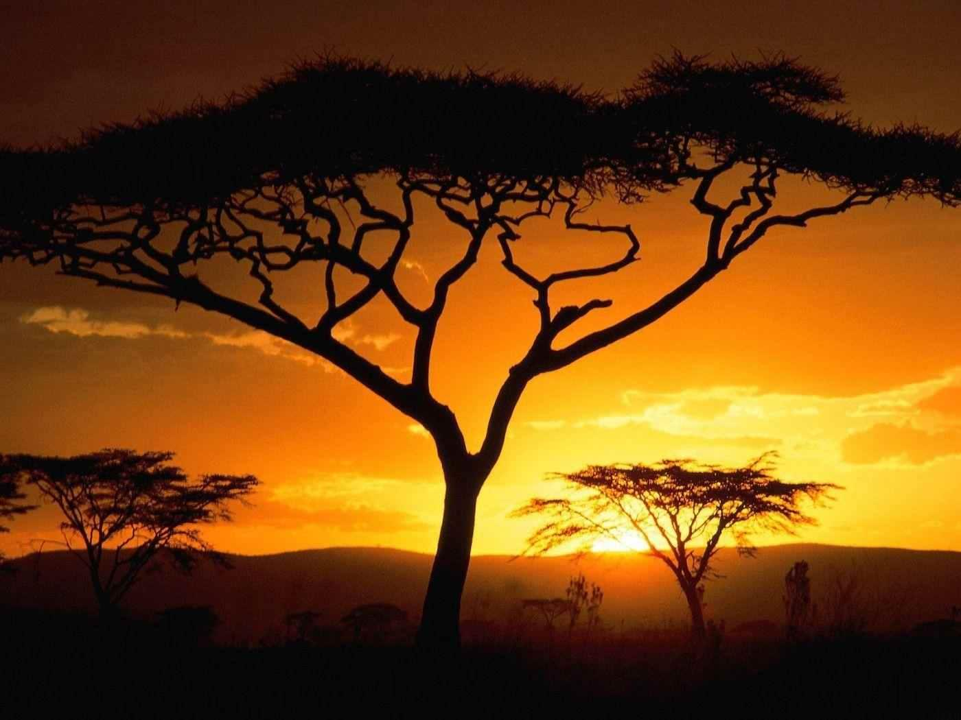 Africa Wallpapers 4s3 14 1 - تصاویر طبیعت آفریقا   Africa Wallpapers