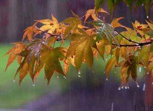 اي نم نم باران (سعید بیابانکی) سایت 4s3.ir