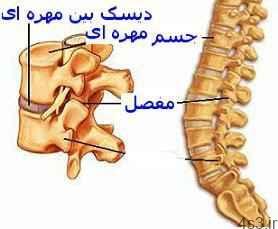درد دنبالچه و چند ورزش ساده برای تسکین درد (+عکس) سایت 4s3.ir