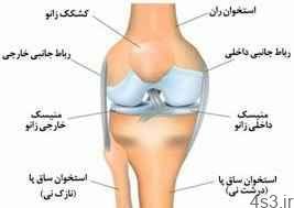 ورزش های ساده برای پیشگیری از درد ساق پا (+تصاویر) سایت 4s3.ir