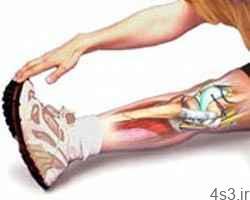 ورزش ودردهای عضلانی سایت 4s3.ir