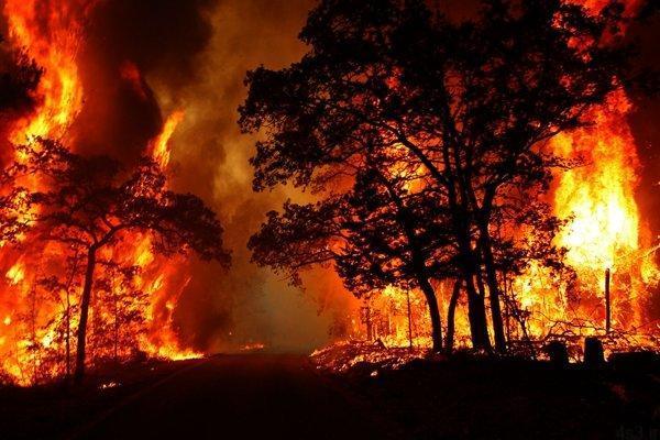 در جنگلهای گچساران ادامه دارد - آتشسوزی در جنگلهای گچساران ادامه دارد