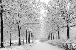 های زمستان 300x196 - پیامک های زمستان