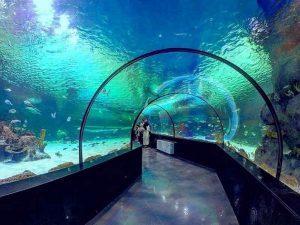 تونل آکواریوم اصفهان سایت 4s3.ir