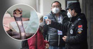 خبرهای پزشکی : شباهت زیاد ویروس کرونا به آنفلوآنزای شدید سایت 4s3.ir