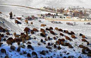 عکسهای زیبا از ارتفاعات گلستان در زمستان سایت 4s3.ir