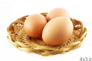 خبرهای پزشکی : مصرف روزانه تخم مرغ برای سلامت قلب مفید است سایت 4s3.ir
