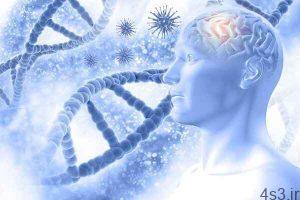 خبرهای پزشکی : وزنه برداری از مغز در مقابل بیماری آلزایمر محافظت می کند سایت 4s3.ir