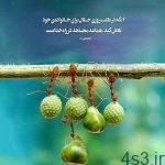 پاداش کسی که به دنبال روزی حلال باشد چیست؟ سایت 4s3.ir