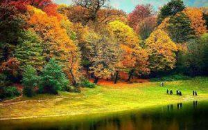 پارک جنگلی ناهار خوران (+تصاویر مناظر زیبای آن) سایت 4s3.ir