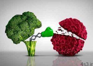 ۹ غذای مخصوص برای جلوگیری از ابتلا به سرطان سایت 4s3.ir