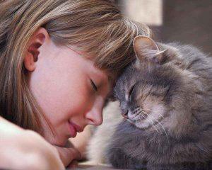 آیا شرایط لازم برای نگهداری از حیوانات خانگی را دارید؟ سایت 4s3.ir