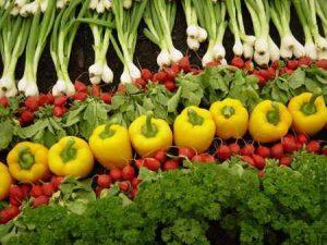 آیامراحل شستشوی سبزیجات را میدانید؟ سایت 4s3.ir