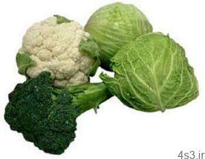 از این 4 سبزی میکروب کش غافل نشوید سایت 4s3.ir