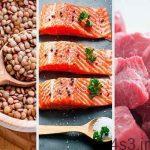از فواید پروتئین بدون چربی برای بدن انسان سایت 4s3.ir