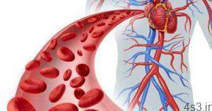افزایش جریان خون با مصرف منظم 11 ماده غذایی سایت 4s3.ir