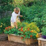 ترفند هایی برای باغبانی آسان در خانه سایت 4s3.ir