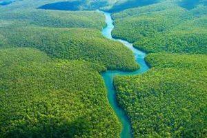 جنگل آمازون، یکی از عجایب هفتگانه جدید جهان (+تصاویر) سایت 4s3.ir