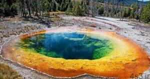 حوضچه گل نیلوفر در ایالات متحده + تصاویر سایت 4s3.ir