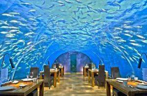 رستوران های مجلل زیر آب (+تصاویر) سایت 4s3.ir