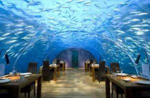 رستورانی زیر آبیِ ایتها در مالدیو (+تصاویر) سایت 4s3.ir