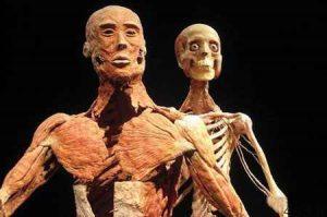 موزه اجساد، عجیب ترین موزه جهان (+تصاویر) سایت 4s3.ir