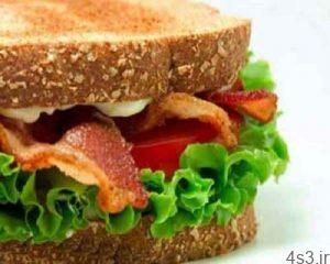 نکاتی برای انواع ساندویچ، پیتزا و سوفله سایت 4s3.ir