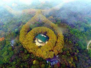 کاخی شبیه گردنبد زمرد در چین (+تصاویر) سایت 4s3.ir