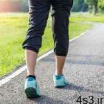 پیاده روی خلاقیت را افزایش میدهد سایت 4s3.ir