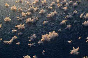 آشنایی با 10 پدیده عجیب اقیانوسی + تصاویر سایت 4s3.ir