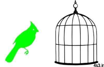 انجام آزمایش پرنده در قفس سایت 4s3.ir