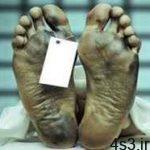 بعد از مرگ چه اتفاقی برای بدن می افتد؟ سایت 4s3.ir