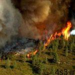 سازمان جنگلها: وقوع ۲۴۰ مورد آتشسوزی در ۱۱ استان کشور طی ۷۴ روز سایت 4s3.ir