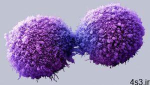 قدم هایی بزرگ برای درمان تمام سرطان ها سایت 4s3.ir