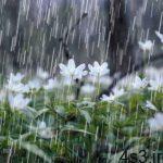 هشدار هواشناسی نسبت به وقوع رگبار باران سایت 4s3.ir